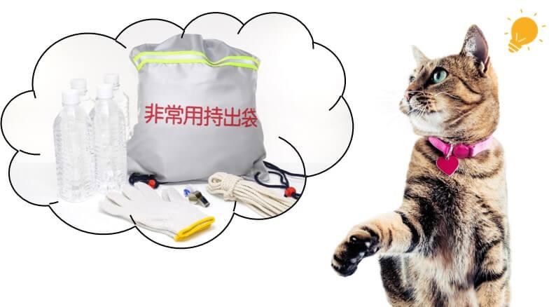 ネコちゃんの防災対策